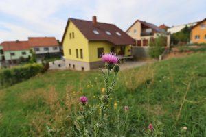 Prodej rodinného domu, Kovalovice